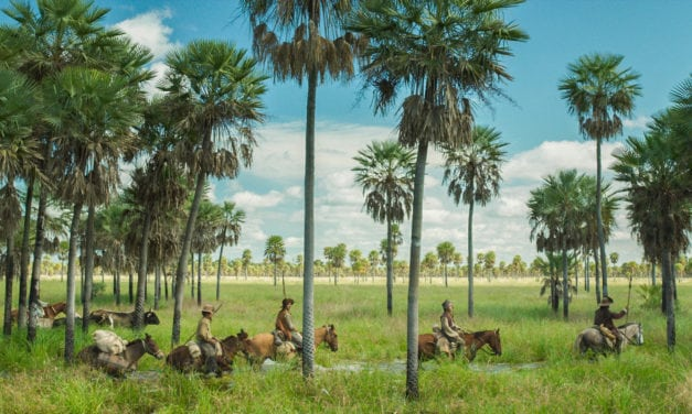Losing Ground: Lucrecia Martel's Zama