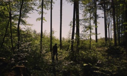 A Projection Over the Forest: An Interview with Ian Soroka